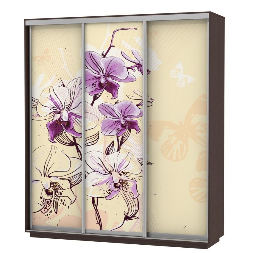 Шкаф-купе Трио В с фотопечатью «Цветы» 1800